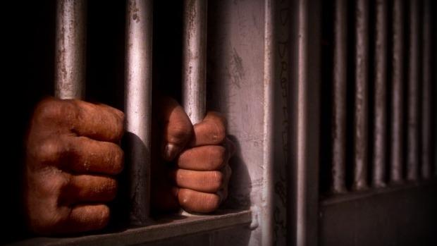 Article image for Releasing prisoners is unbelievable: expert