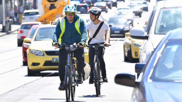Article image for One-Metre rule to protect cyclists