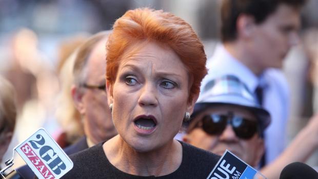 Article image for Pauline Hanson returns to politics