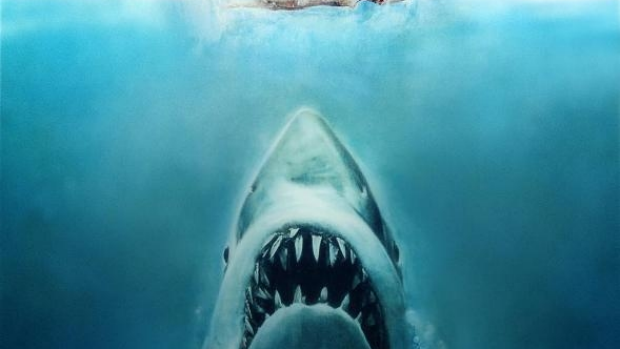 Article image for WA shark policy compared to the plot line of 1975 film JAWS