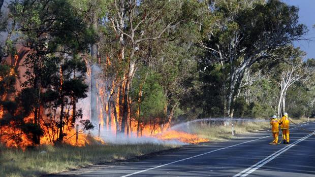 Article image for Report suspicious activity this bushfire season