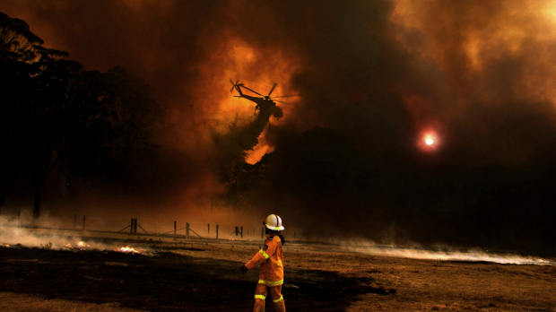 Article image for Parkerville bushfires a year on