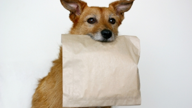 Article image for Customer forced to sign waiver for doggie bag at George Calombaris restaurant Hellenic Republic
