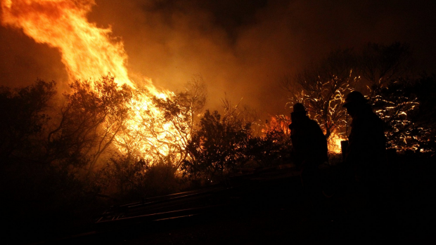 Article image for Calls for harsher penalties for firebugs