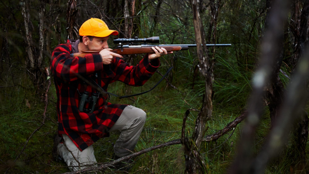 Article image for Hunting on crown land could go ahead if WA government agrees to recommendations