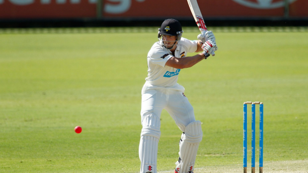 Article image for Marsh goes into bat for Voges