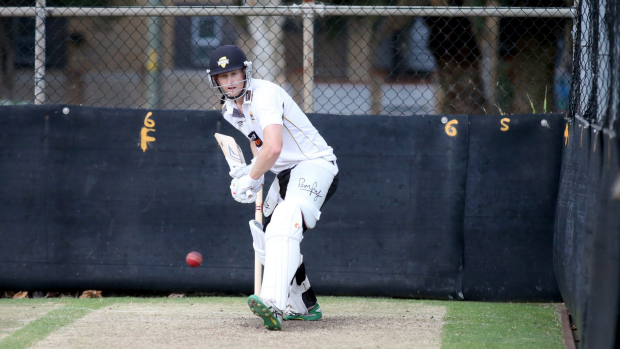 Article image for WA's Adam Voges makes Ashes squad at the age of 35
