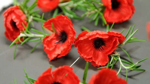 Article image for ANZAC security