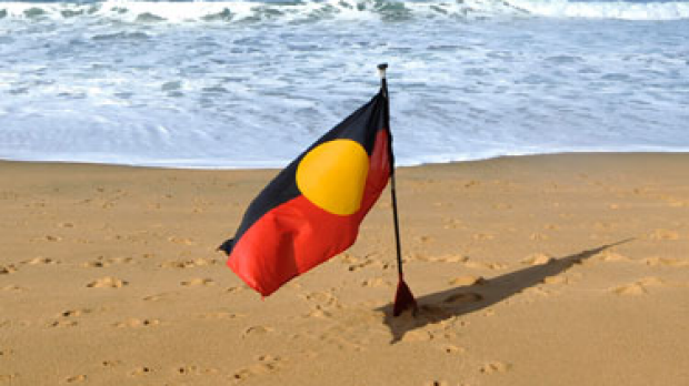Article image for Aboriginal not indigenous