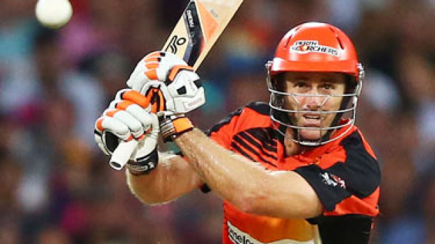 Article image for Scorchers one win from final