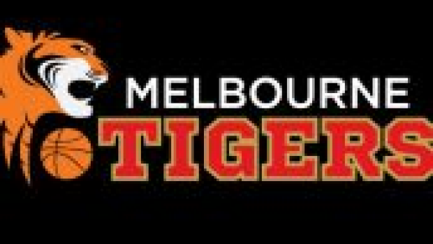 Article image for NBL great slams Tigers name change