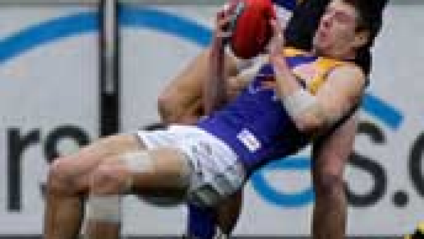Article image for Simpson backs Beau to return