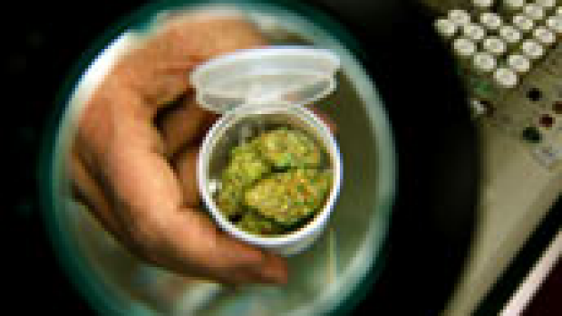 Article image for Medical marijuana. Why not?