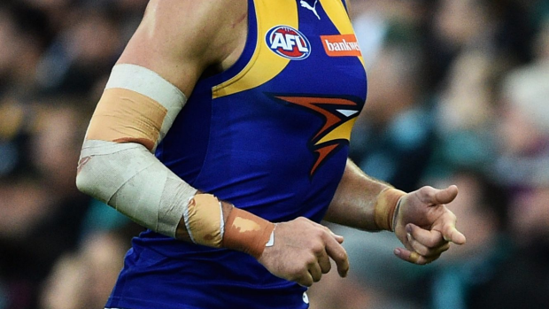 Article image for Eagles Dominate Over Suns
