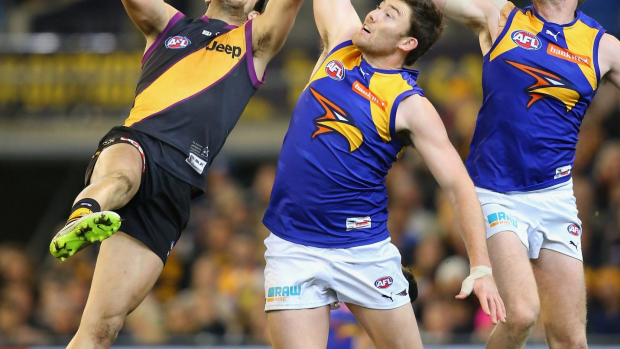 Article image for Eagles Take Mighty Win Over Tigers