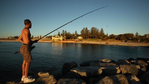 Article image for Recfishwest Fishing Forecast July 3
