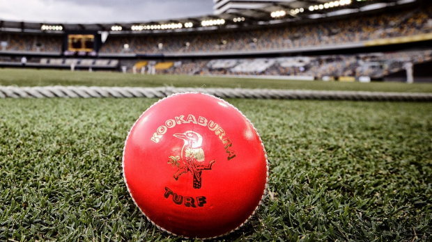 Article image for Greg Chappell backs day-night Tests