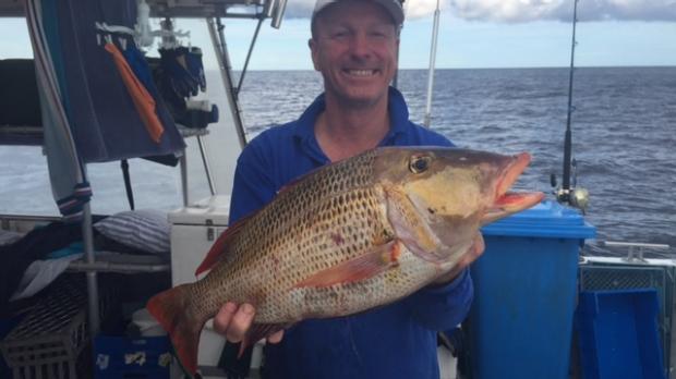 Article image for Recfishwest Fishing Report July 10