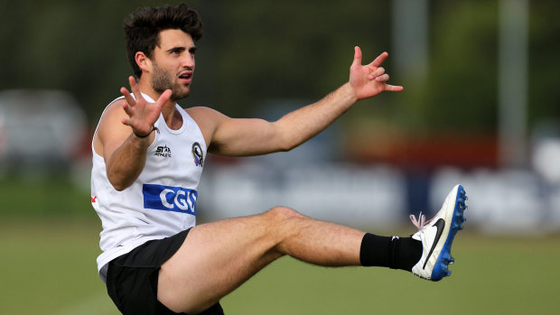 Article image for Fasolo development back to front