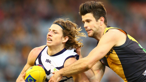 Article image for Dockers Snatch Win From Tigers