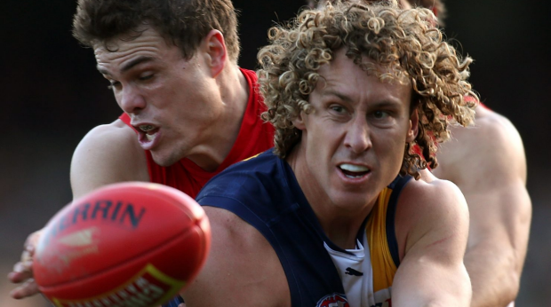 Article image for Eagles Dominate Over Swans