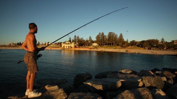 Article image for 6PR Fishing Report November 27