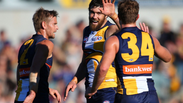 Article image for West Coast thump the Western Bulldogs by 77 points