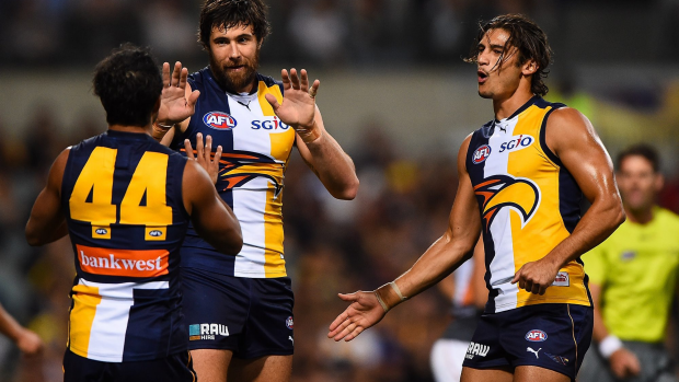 Article image for Loss to Adelaide 'a reality check'