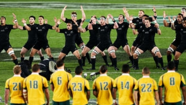 Article image for Johns: Kiwis scared of Wallabies