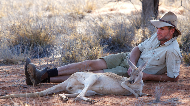 Article image for Kangaroo Dundee and his Sanctuary