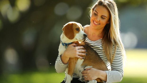 Article image for Pets to stay keeps the doctors away