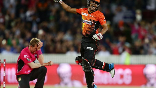 Article image for Scorchers with point to prove