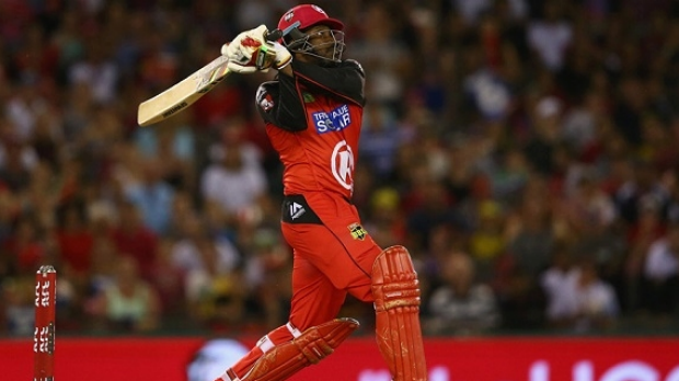 Article image for Chris Gayle's heroics not enough as Melbourne Renegades bow out of BBL05