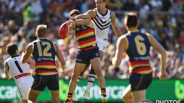 Article image for GAME DAY: Freo's fall from grace