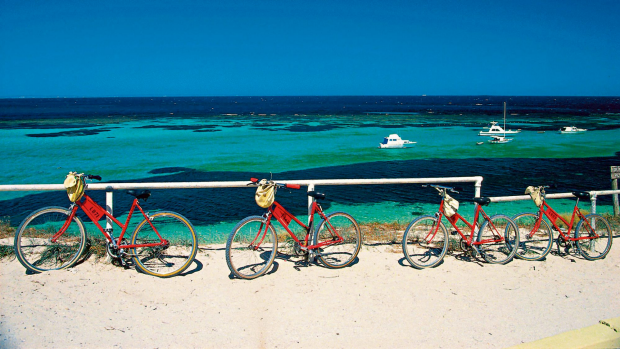 Article image for 'Rottnest is not a creche'