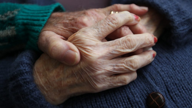 Article image for Human dementia vaccine trials only a 'couple of years away'