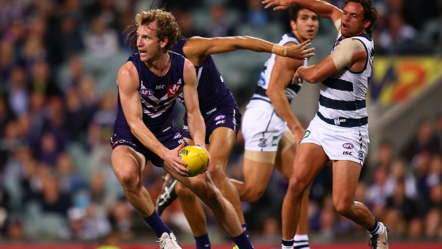 Article image for GAME DAY: Cats claw back for win over Freo