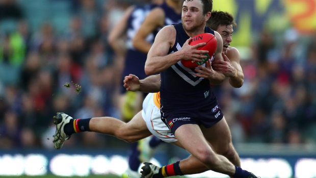 Article image for Back to basics for Freo