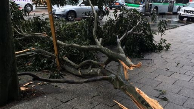 Article image for More wild winter weather on the way for Perth