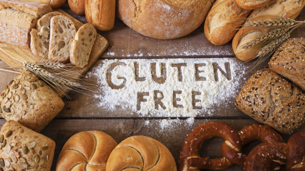Article image for New protein, not gluten, to blame