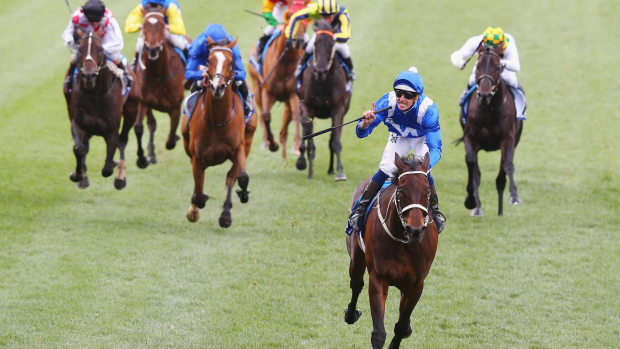 Article image for Is Winx the greatest Australian race horse ever?