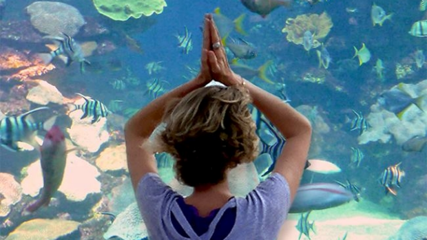 Article image for Yoga with a view