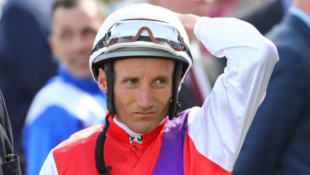 Article image for Winterbottom Stakes sweep
