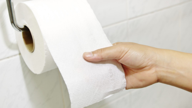 Article image for Toilet Paper Review
