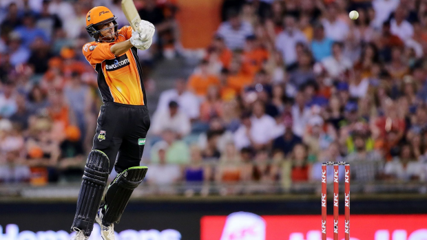 Article image for No rest for the Scorchers