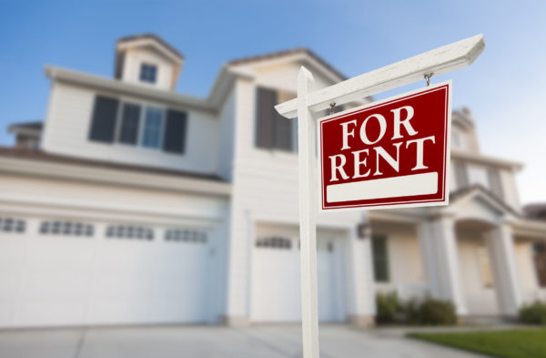 Article image for 'We're heading for a rental crisis' – Damian Collins