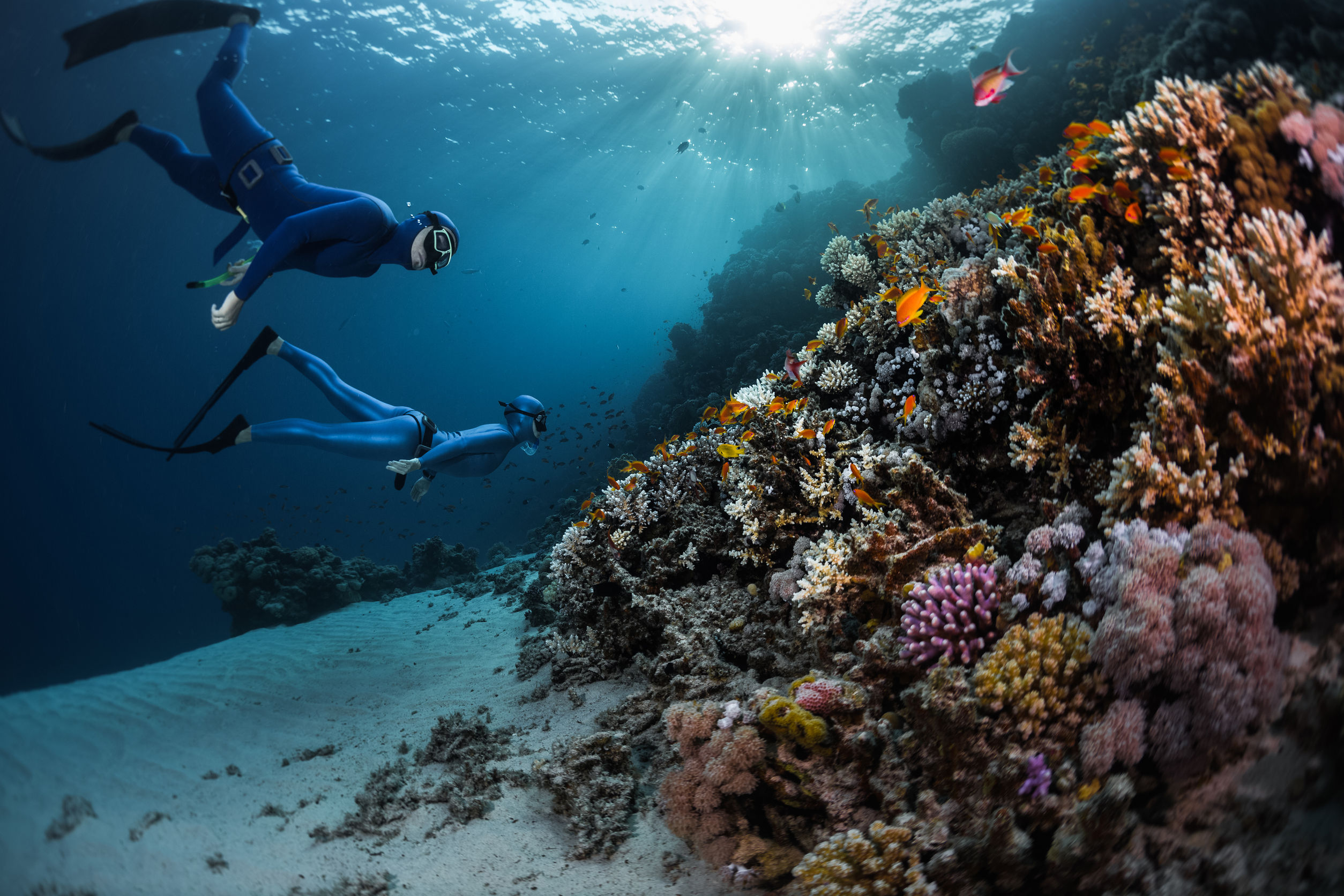 Article image for Peter Barnes – Manager Ningaloo Marine Park