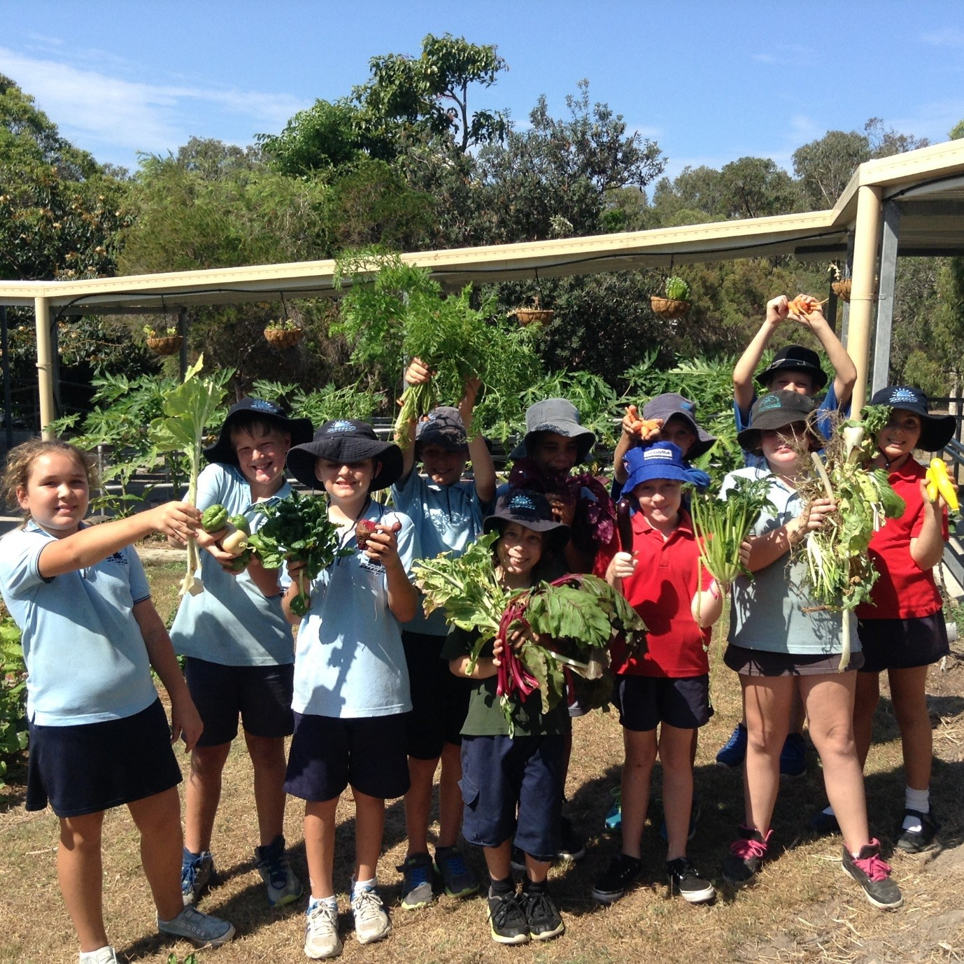 Article image for Generous Garden Grants for Little Green Thumbs