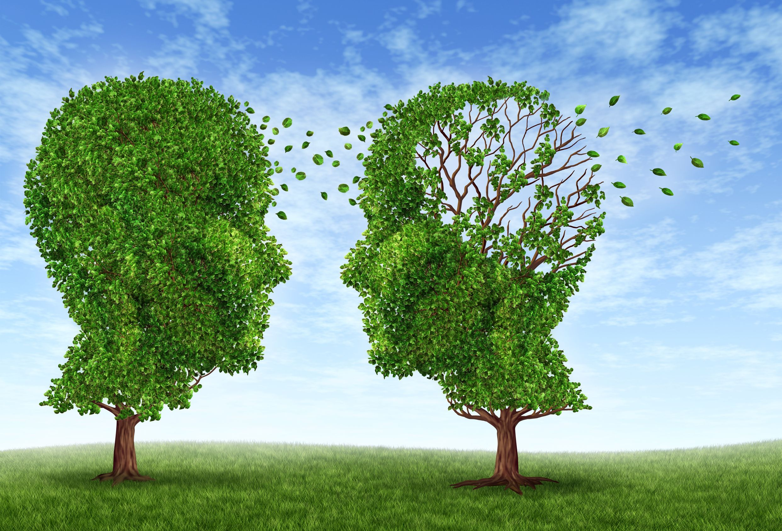 What can you do to avoid Alzheimer's Disease?
