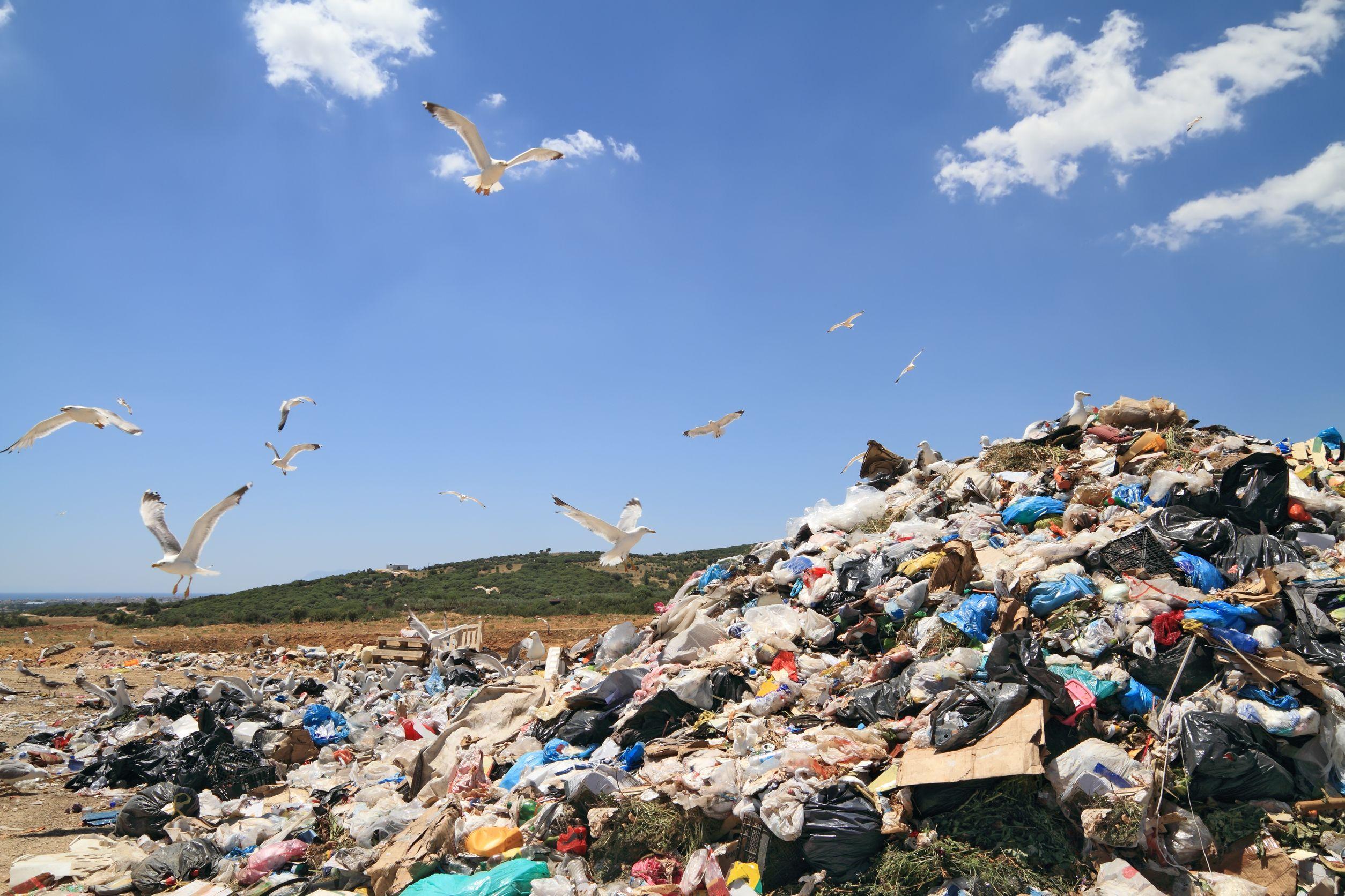 Plastic bag ban won't help the environment
